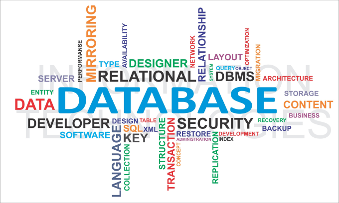 create professional business database  mysql, mssql or access