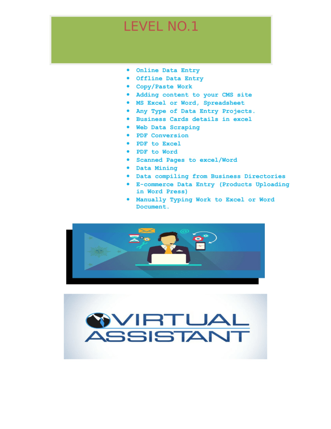 Data entry and virtual assistant by Sanjaysingh937