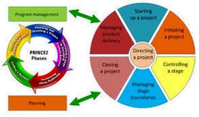 project management for IT and telco