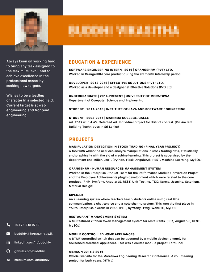 canva cv Create a professional cv for you using canva by Buddhiv