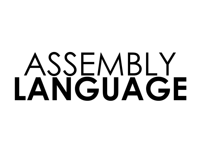 do any kind of code in assembly language for you