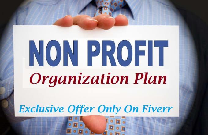 write a perfect non profit organization business plan