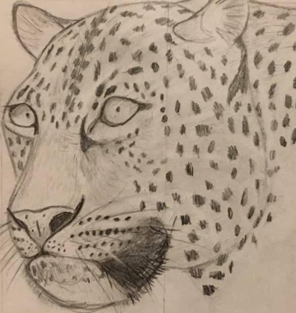 hand draw a realistic portrait of your pet or animal