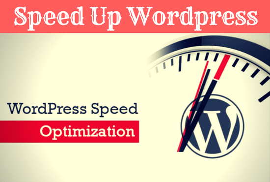 I will do optimize wordpress speed and performance
