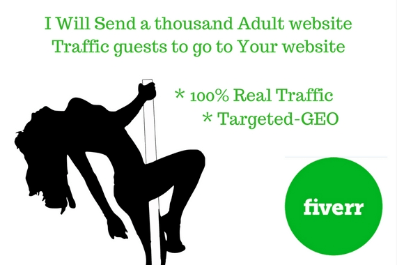 Adult Web Site Traffic