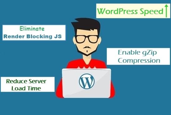 I will speed up wordpress website,improve mobile loadtime