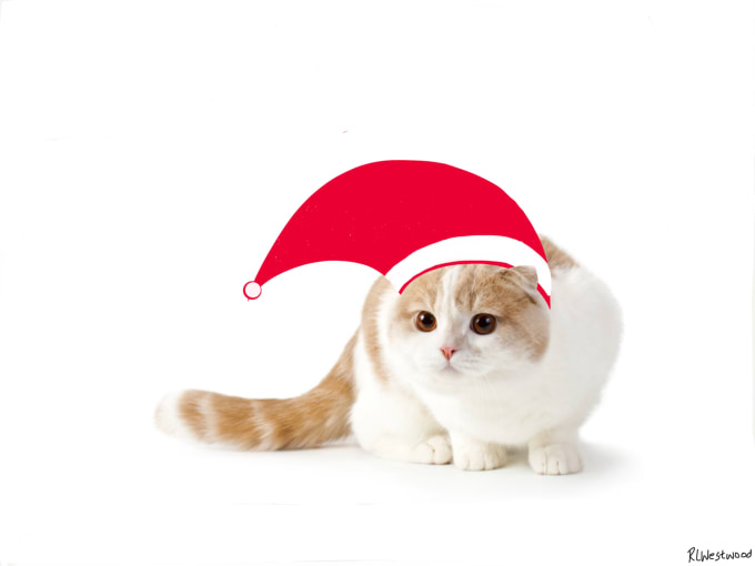 put a christmas hat on your picture