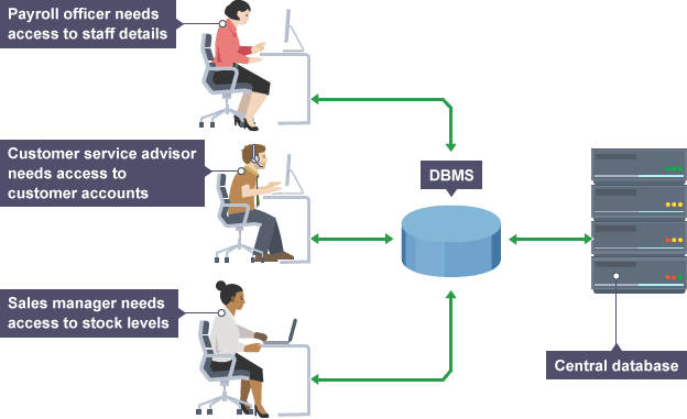 a study of database management system Database management systems: a case study of some knowledge about management information systems and database management systems database in this study.