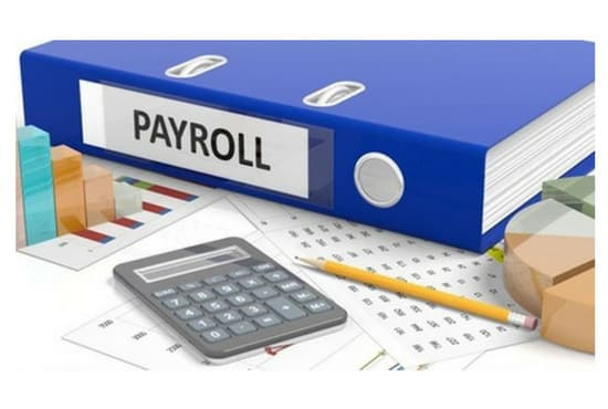 Do payroll calculation perfectly by Rehan3542