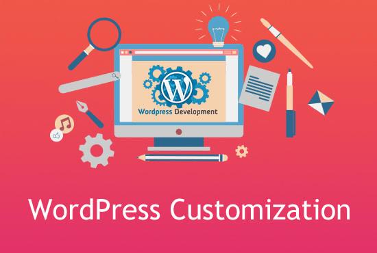 I will do 26 in 1 customization,speedup wordpress,seo and much more