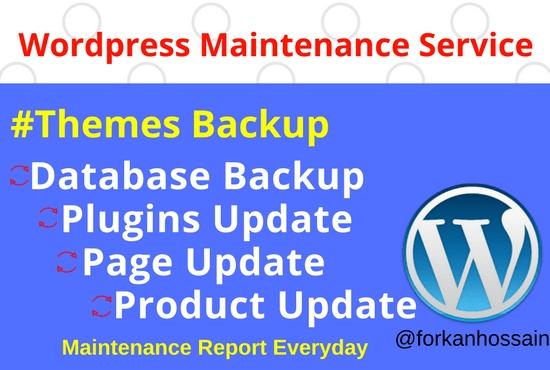 I will do wordpress maintenance services