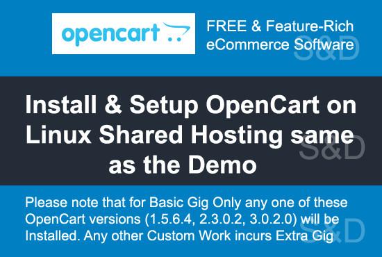 install and setup opencart on your hosting same as the demo