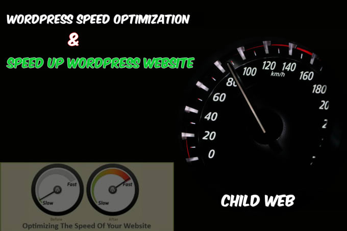 I will optimize your wordpress web page