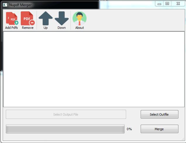 provide custom software development service