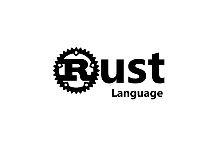 program using the rust programming language
