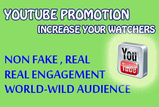 do professional youtube video promotion