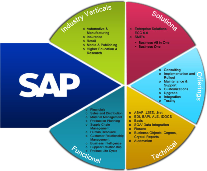 Do Sap Abap Development And Support Sd Mm Fi Pp Modules By
