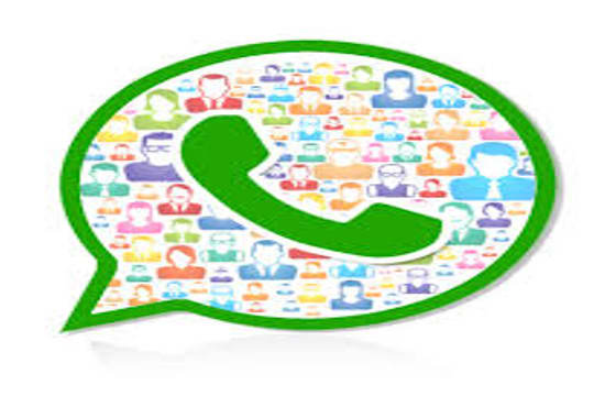 filter any number of contacts to get whatsapp numbers from it