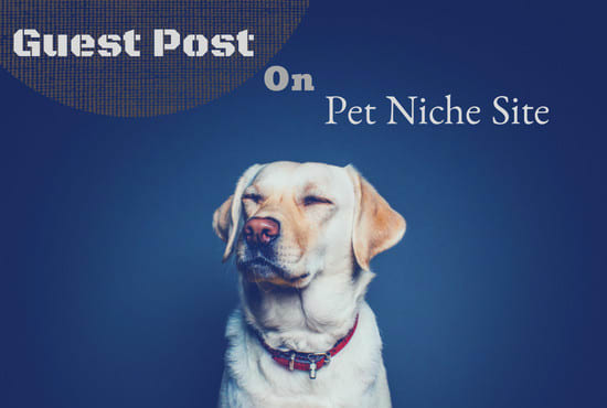 publish a guest post genuine dog blog site