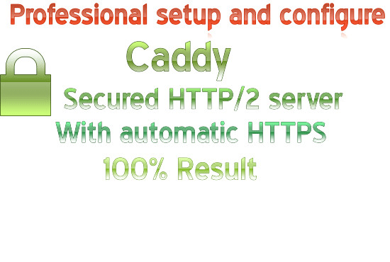 install and configure caddy