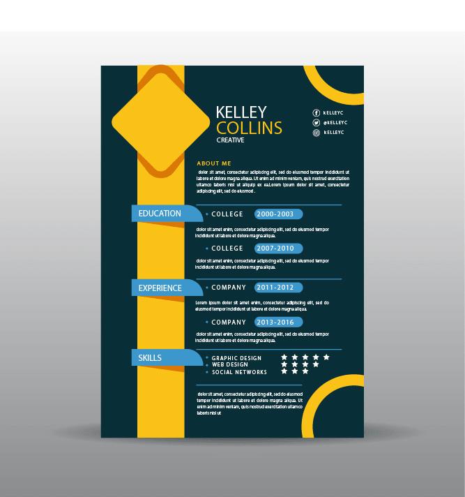 do eye catching infographic resume cv design by ali khokhar