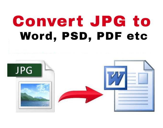 convert pdf, jpg to word, powerpoint, cdr, ai and PSD