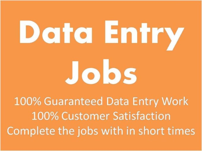 provide data entry, analysis, and data visualization