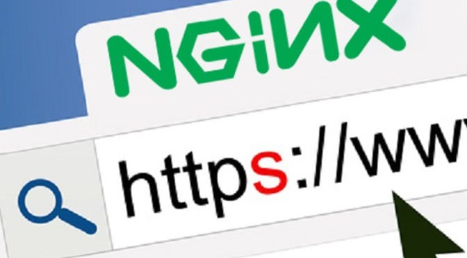 setup laravel in nginx server with free https url