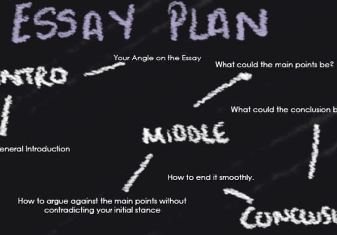 degree essay plan How i found the best education service provider to write my essay write your college essay at how to start an essay business plan argumentative.