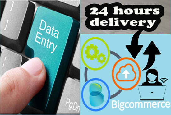 do data entry and data analysis active in 24 hours