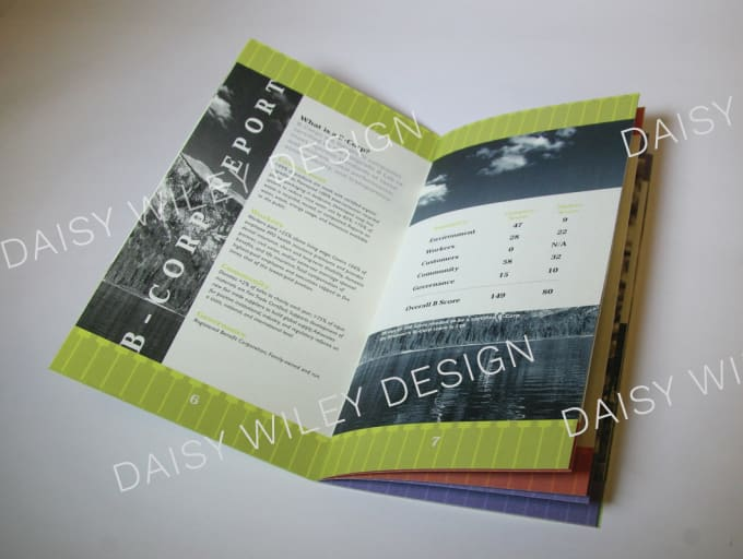 design a professional booklet for you by daisywiley