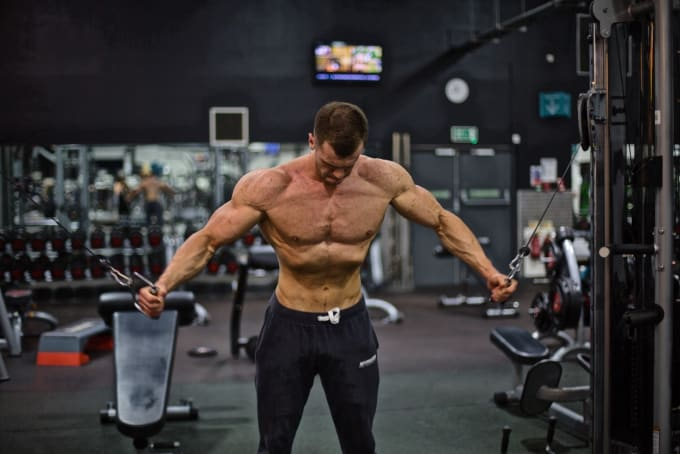 Create A Fully Customized Training Plan For Both Fat Loss Or Muscle Gain