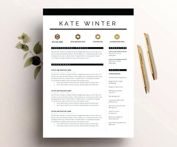 do professional modern cv design or resume by raeuberstochter