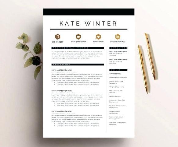 do professional modern cv design or resume by raeuberstochter