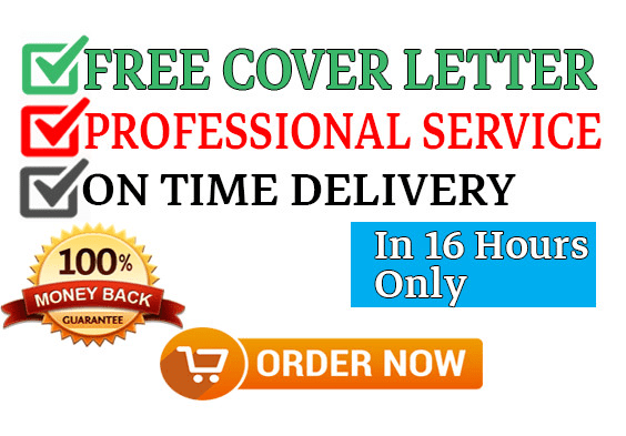 do professional resume writing cv writing from scratch by theguruteam