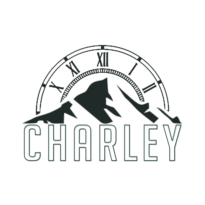 create you a clean quick professional looking logo by amcharleydesign
