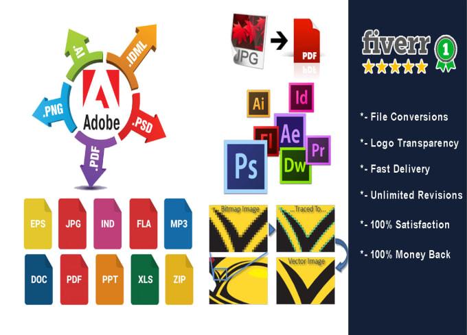 convert your logo, pdf, jpeg, png, ai, word files