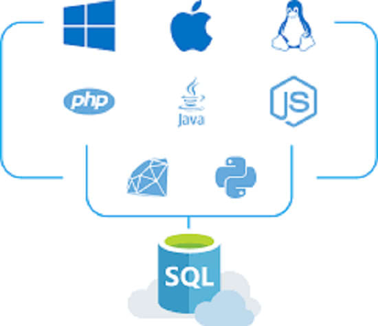 hitesh222 : I will create oracle sql queries using complex joins and  subqueries on large datasets for $5 on www fiverr com