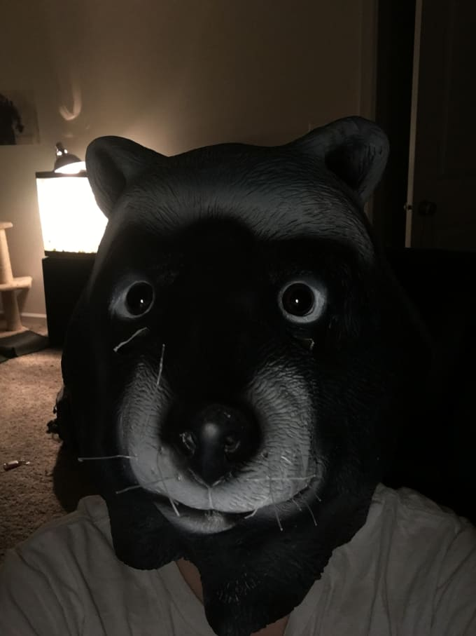l will do a fortnite dance with a raccoon mask on