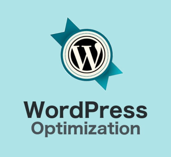 Optimize wordpress website load time by Thephpx