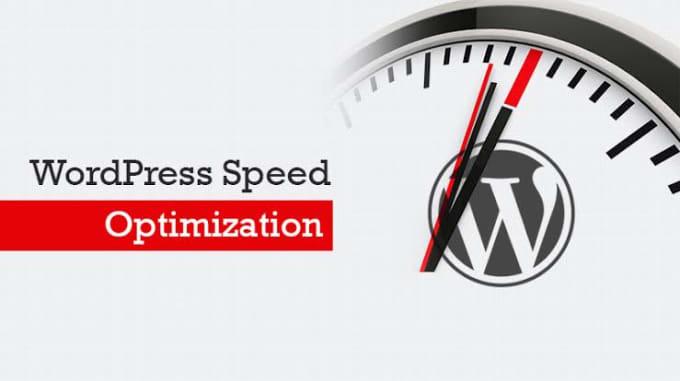 I will speed up any slow wordpress website