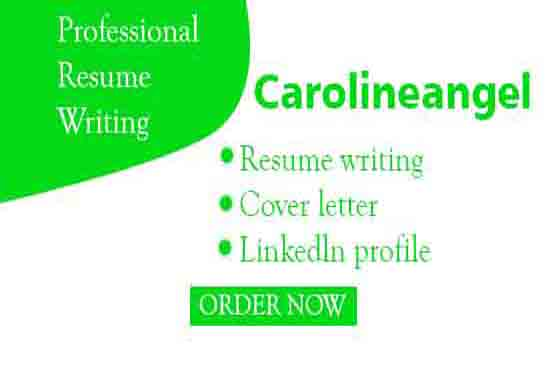 Provide a professional resume writing.