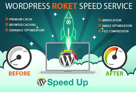 Speed up wordpress website in 12 hours by Go_robbani