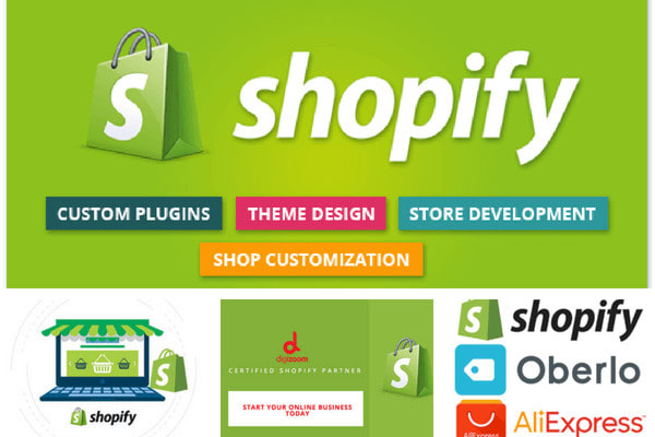 design a professional shopify drop shipping store