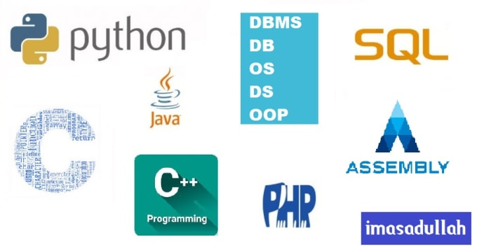 Write program in java, python and design a dbms by Imasadullah