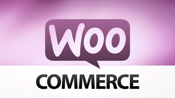 I will speed up and fix wordpress woocommerce website