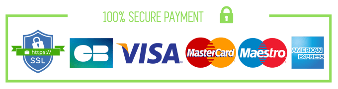 Image result for secure payment logo