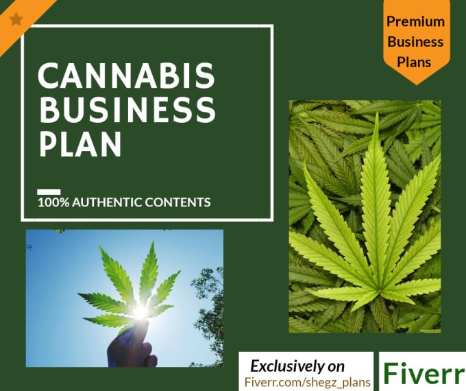 write your cannabis or marijuana business plans