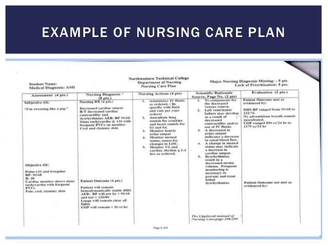 Develop a nursing care plan by Jos_san
