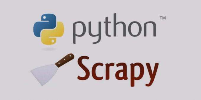 vikaskumar693 : I will web scraping using python or scrapy framework for  $30 on www fiverr com